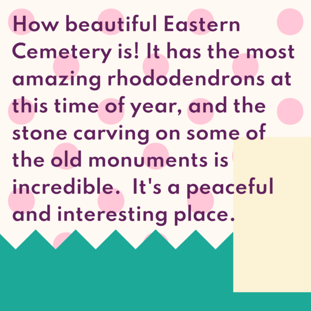 How beautiful Eastern Cemetery is! It has the most amazing rhododendrons at this time of year, and the stone carving on some of the old monuments is incredible. It's a peaceful and interesting place.