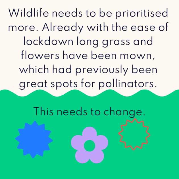 Wildlife needs to be prioritised more. Already with the ease of lockdown long grass and flowers have been mown, which had previously been great spots for pollinators. This needs to change.