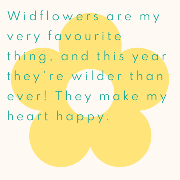 Widflowers are my very favourite thing, and this year they're wilder than ever! They make my heart happy.