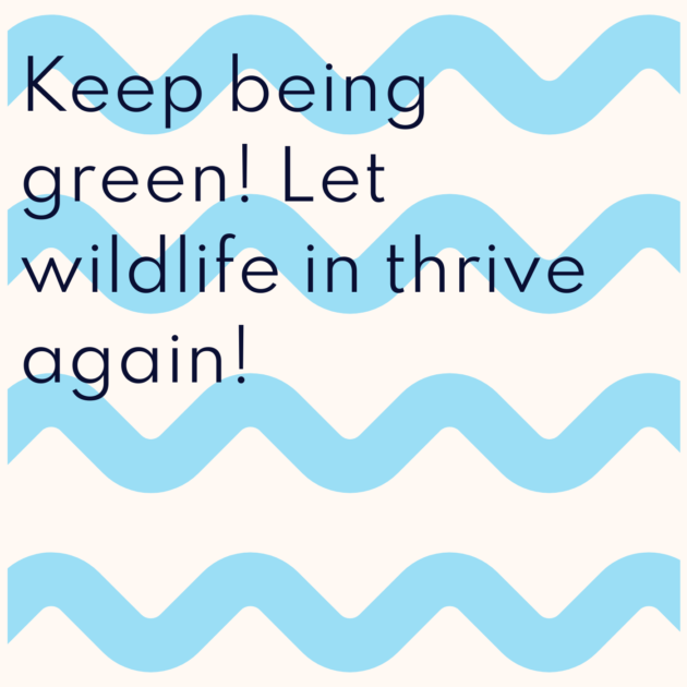 Keep being green! Let wildlife in thrive again!