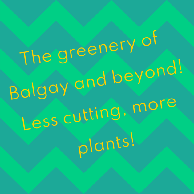The greenery of Balgay and beyond! Less cutting, more plants!