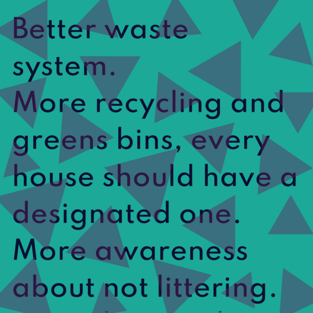 Better waste system. More recycling and greens bins, every house should have a designated one. More awareness about not littering. Keep the city clean.