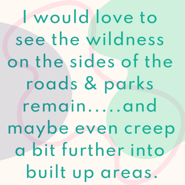 I would love to see the wildness on the sides of the roads & parks remain.....and maybe even creep a bit further into built up areas.