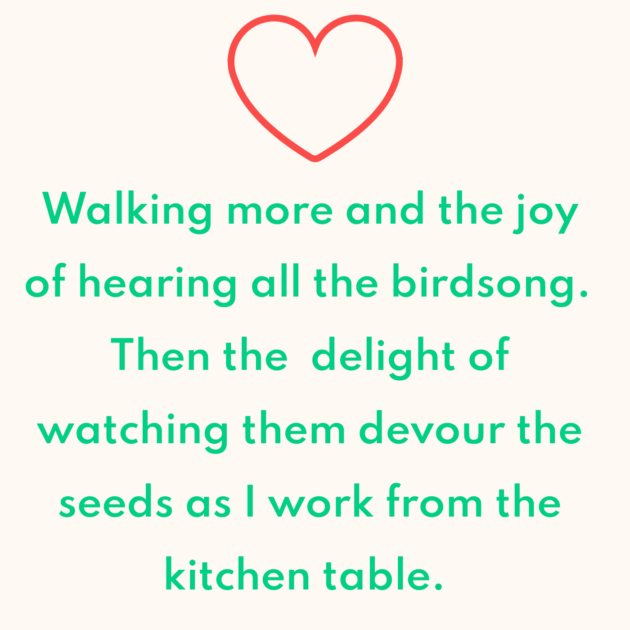Walking more and the joy of hearing all the birdsong. Then the delight of watching them devour the seeds as I work from the kitchen table.