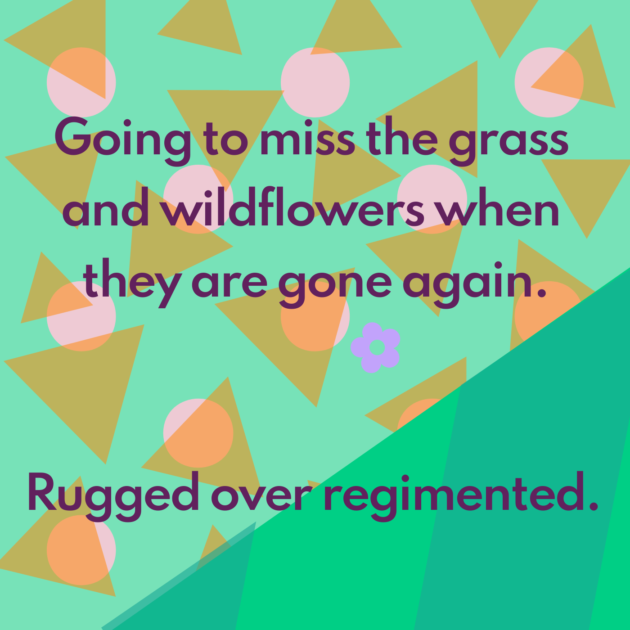 Going to miss the grass and wildflowers when they are gone again. Rugged over regimented.