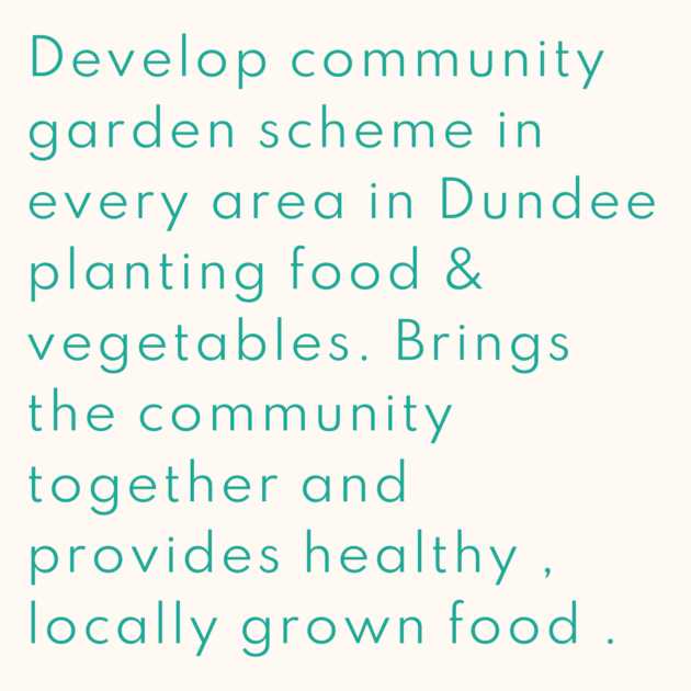 Develop community garden scheme in every area in Dundee planting food & vegetables. Brings the community together and provides healthy , locally grown food .